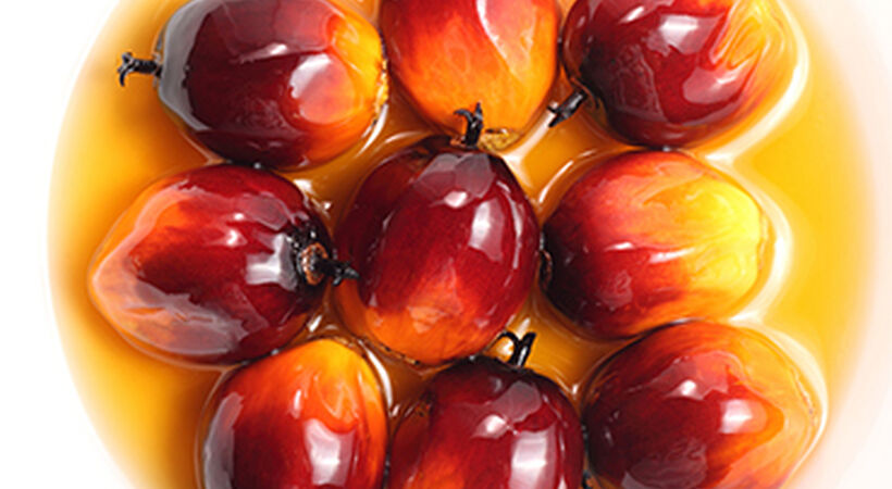 Palm oil market to miss out on traditionally high Ramadan demand period