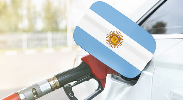 Argentina increases biofuel prices to aid biodiesel sector