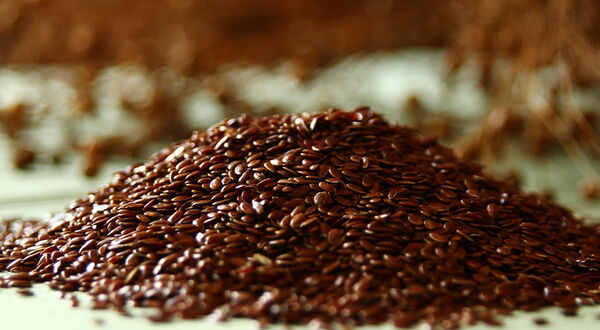 More than a third of Kazakhstan flaxseed exported to China