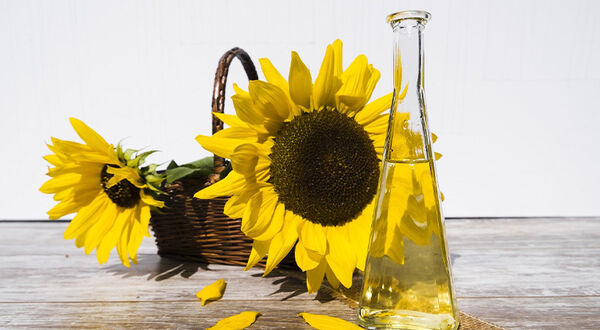 Ukraine looks at sunflower oil price regulation package to limit inflation